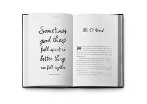 Splitsville-book-2
