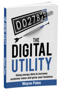 Digital Utility 3D cover